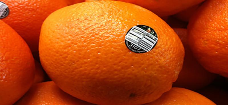 Etiquetas para Frutas E Verduras - 2